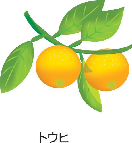 touhi